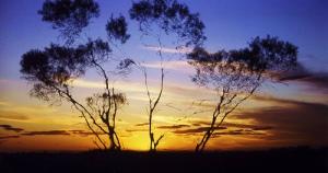 Australian Sunset by Reto Fetz